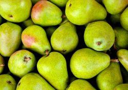 Økologisk firmafrugt - en investering i dine medarbejderes sundhed